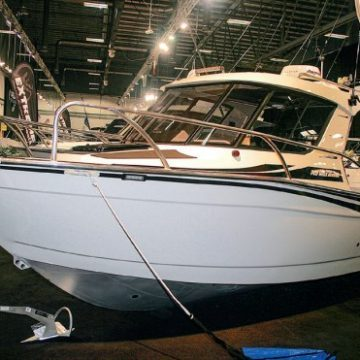 Boat Show blossoms