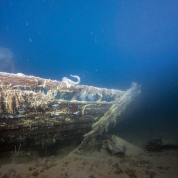Frozen clues: Franklin's ships found