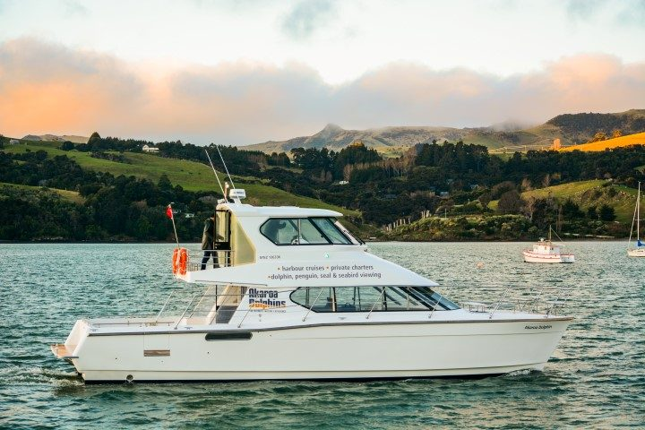 Dolphin-watching boat for Akaroa