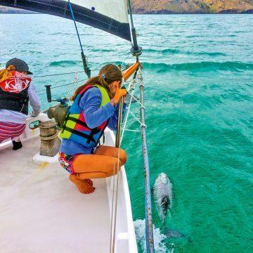 Lowrance celebrates getting back to boating