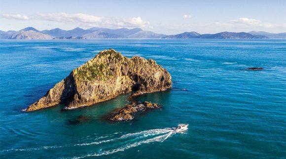 Waikawa Marina Expands
